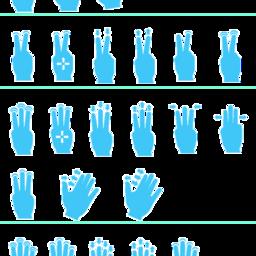 Gesture Pro